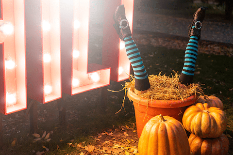 Décoration pour une soirée éco-responsable Halloween