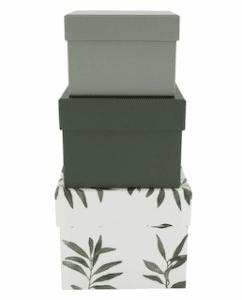 Photo de 3 boîtes en carton de 3 tailles différentes aux coloris vert et blanc avec des branches d'olivier de la marque Hema à utiliser pour emballer ses cadeaux de manière éco-responsable
